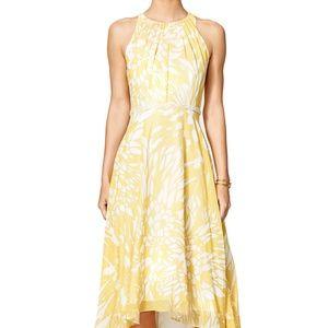 Badgley Mischka Paradiso High Low Floral Dress